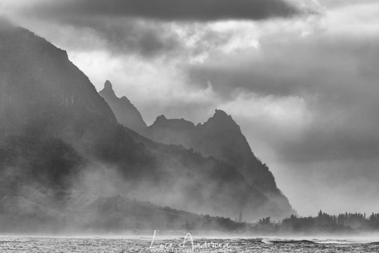Black and White Nature Photography to create moody photos.