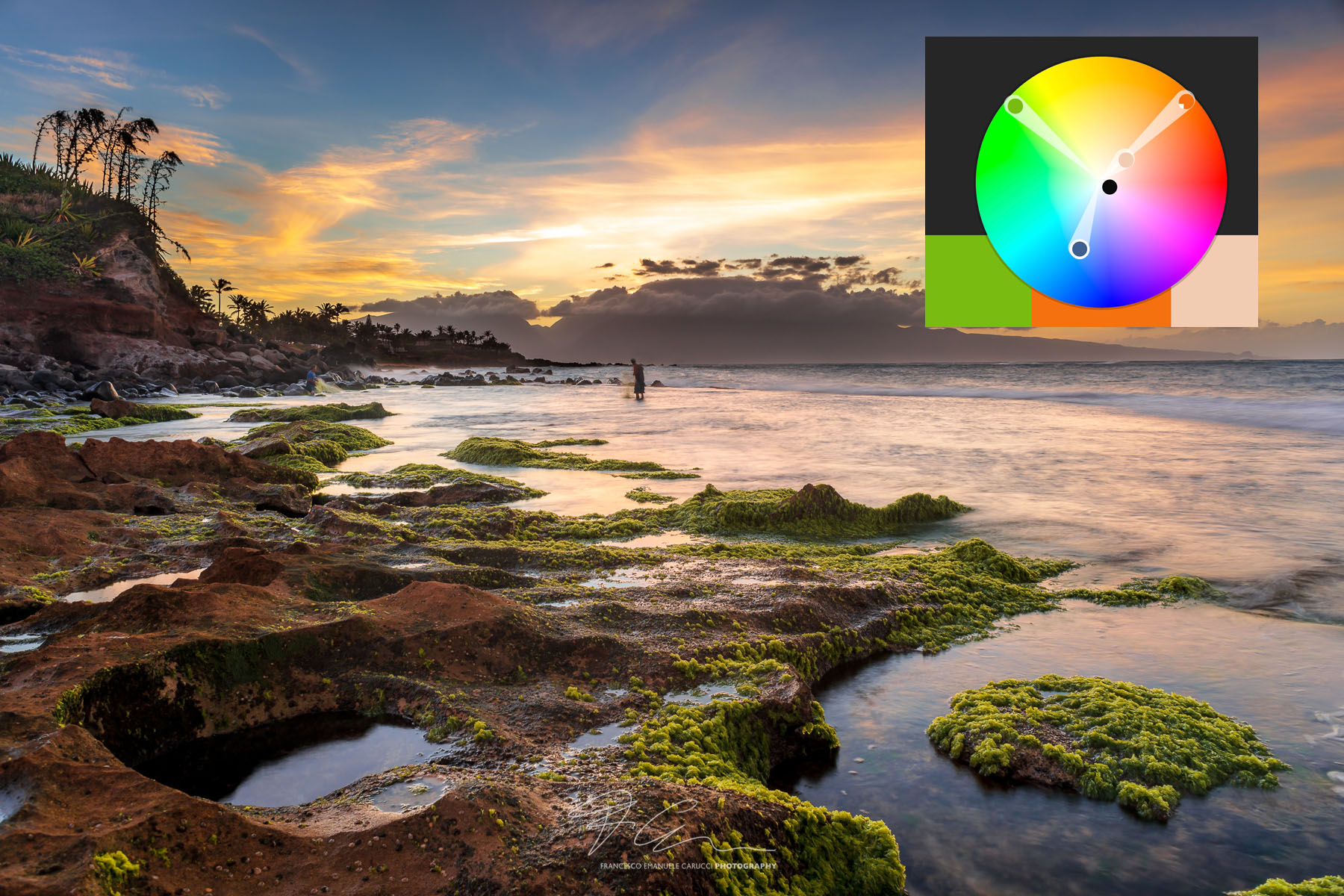 How to Effectively Use Colors in Nature Photography