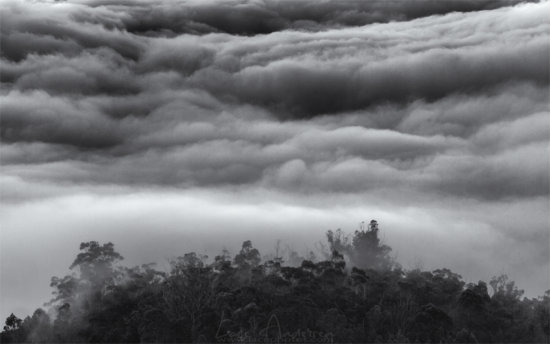 Black and White Nature Photography to bring out textures in the clouds
