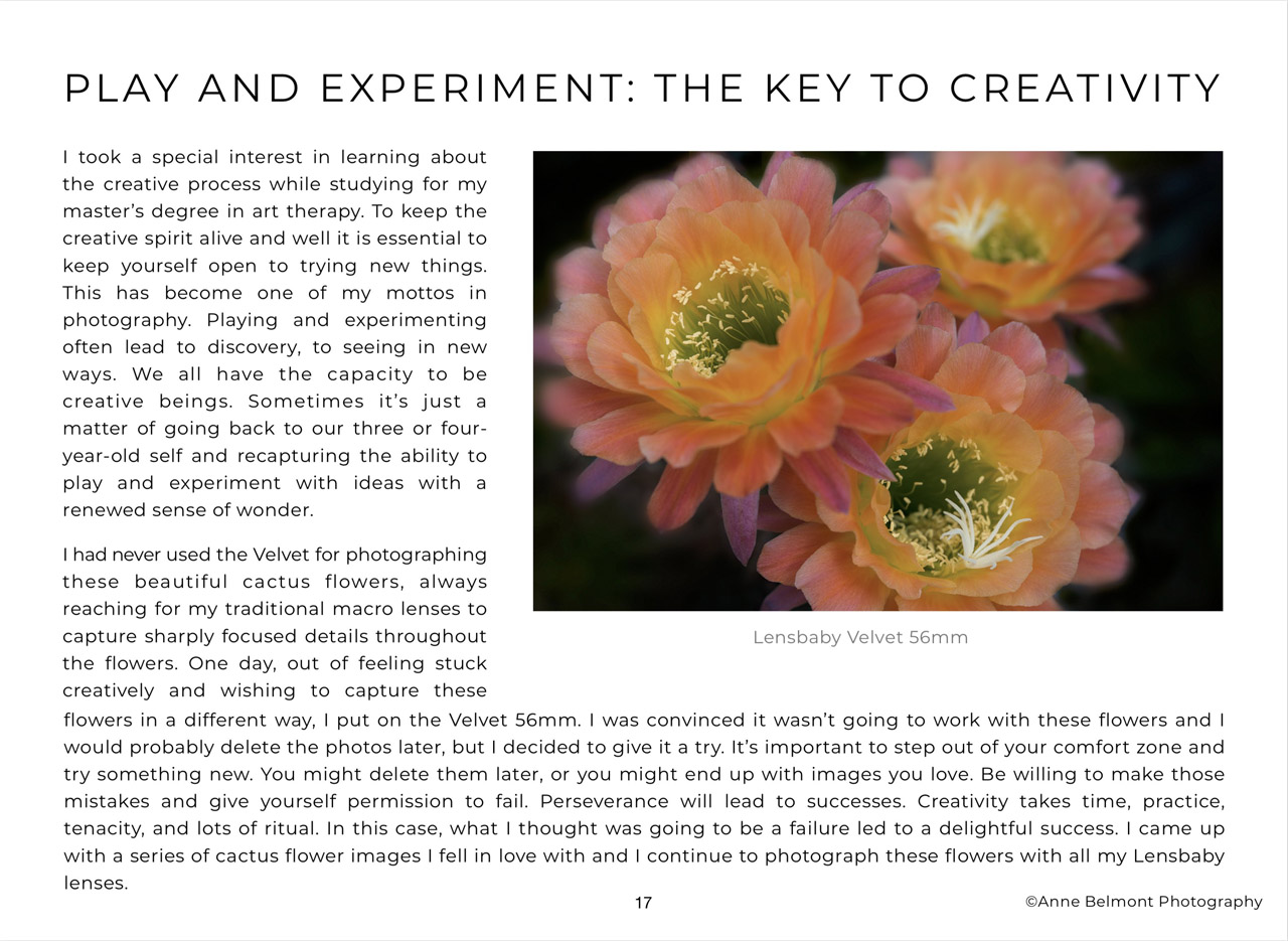 Creative Flower Photography eBook Sample Page