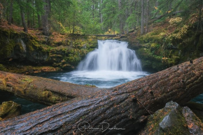 6 Variables that Impact Colors in Landscape Photography Blog Post by Patricia Davidson