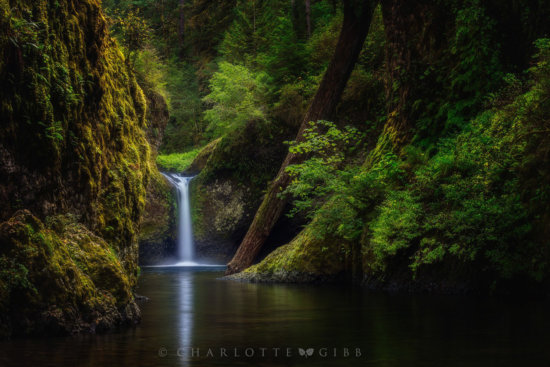 Green color landscape photography example by Charlotte Gibb