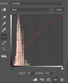 Photoshop curves tool showing red channel adjustment for nature photography by Jane Palmer