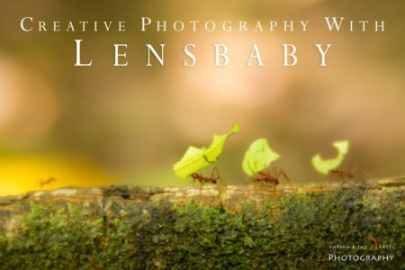 Creative Photography with Lensbaby Tutorial Cover