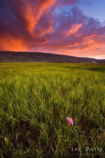 Landscape photography with complementary colors from Yellowstone National Park by Jay Patel