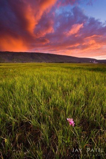 Camera Focus set using Hyperfocal Distance by Landscape Photographer Jay Patel