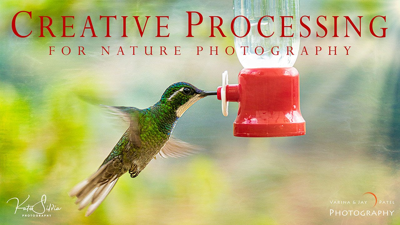 Creative Processing for Nature Photography Tutorial Cover