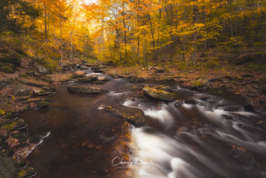 Long Exposure Fall Photography with ND Filters by Chrissy Donadi
