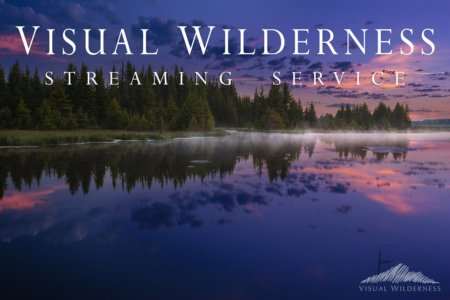 Cover for Visual Wilderness Streaming Service
