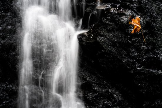 Landscape photography from Black walls falls in Uvas Canyon, California