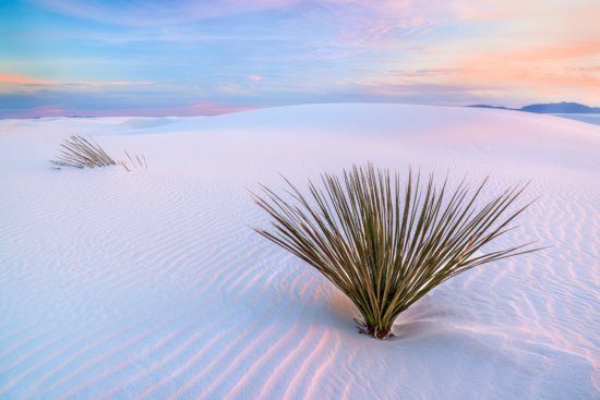 Landscape Photography composition from White Sands, New Mexico by Francesco Carucci