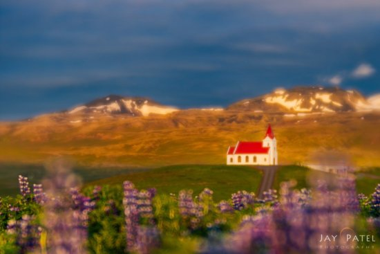 Artistic nature photography with narrow aperture from Iceland by Jay Patel