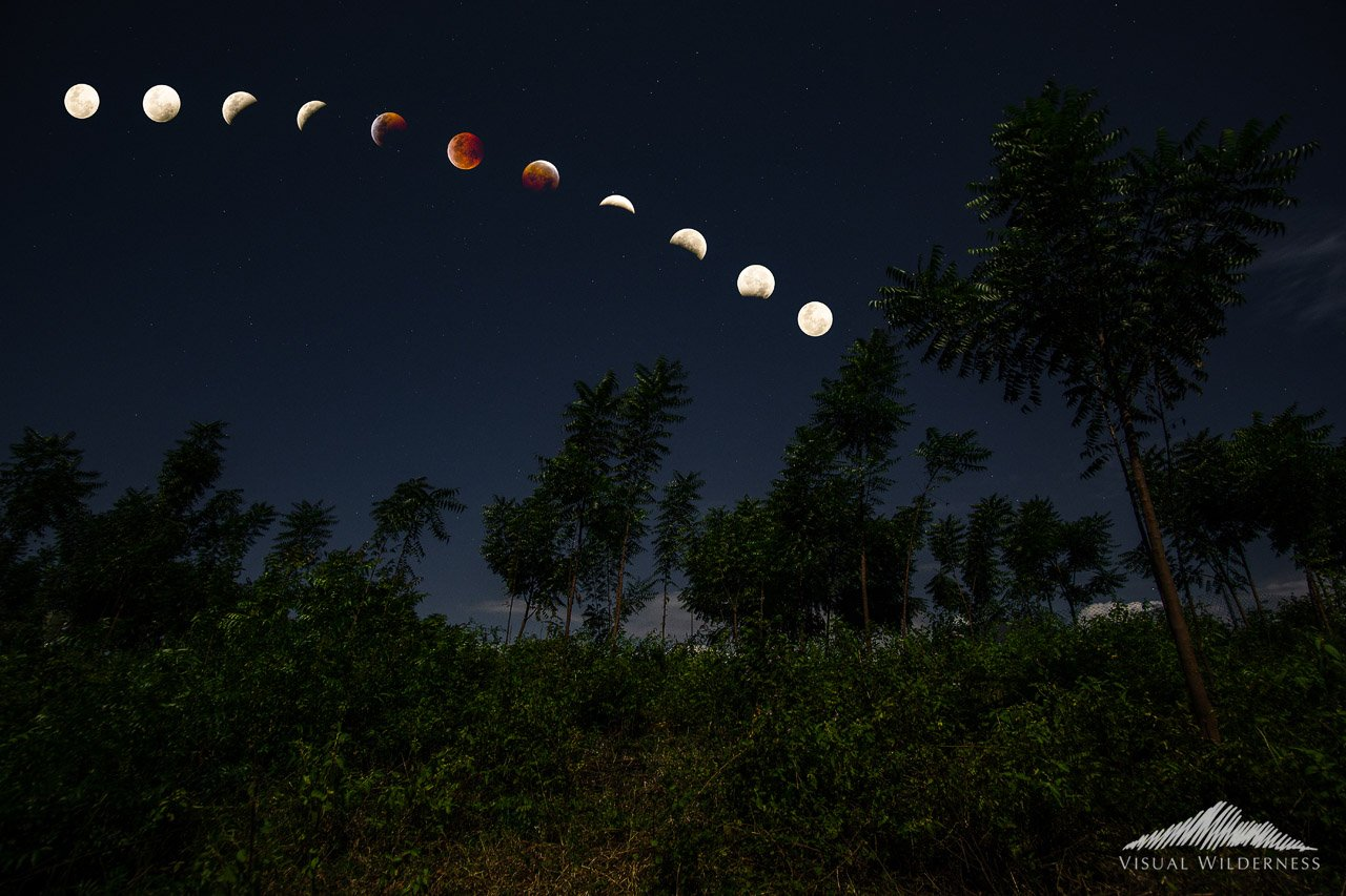 Lunar Eclipse Night Photography example by David Johnston