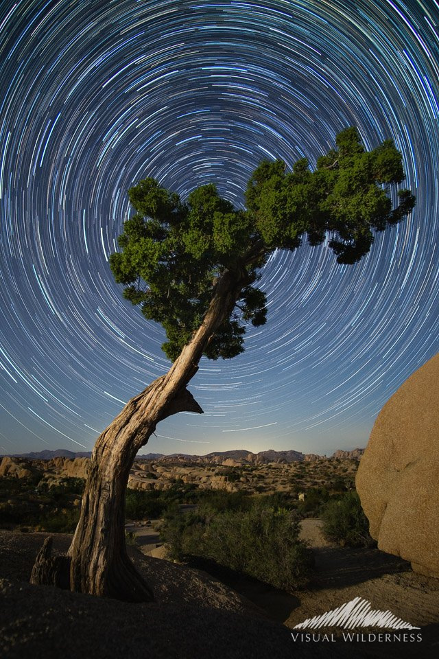 Night Photography of star trails by David Johnston