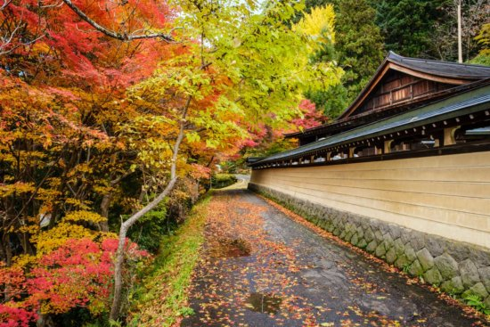 Fall travel photograph from Takayama, Japan by Ugo Cei