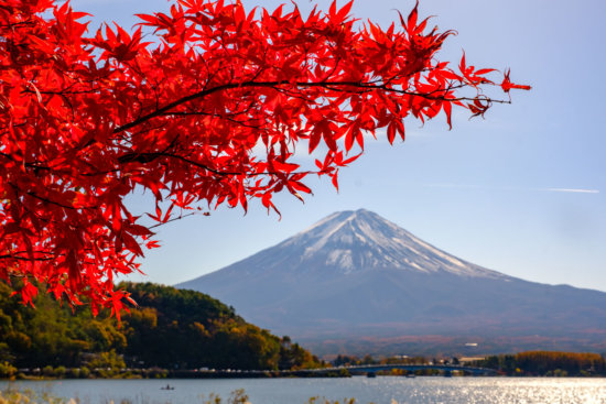 Red Maple and Mount Fuji, Japan bu Ugo Cei
