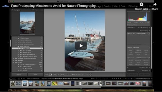 Thumbnail for Beginner Post Processing Mistakes to Avoid for Nature Photography