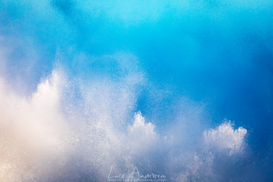 High speed nature photography abstract by Lace Andersen