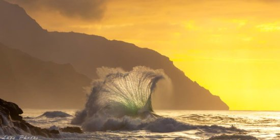 Back lit nature photography of waves by Lace Andersen