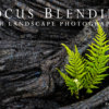 Focus Blending for Landscape Photography Tutorial Cover