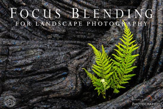 Focus Blending for Landscape Photography Tutorial Cover
