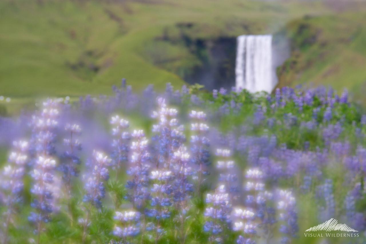 Artistic Landscape Photography created using Focus Blending