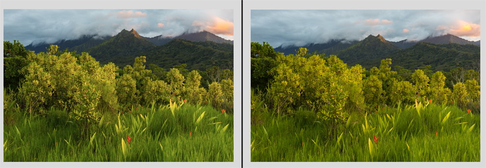 Perspective Distortion correction in Landscape Photography by Lace Anderson