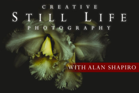 Creative Travel Photography Online Class