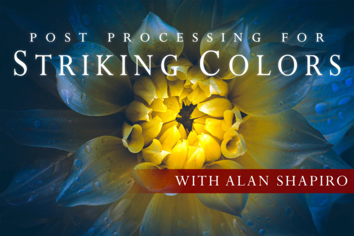 Cover for Post Processing for Striking Colors Online Class by Alan Shapiro