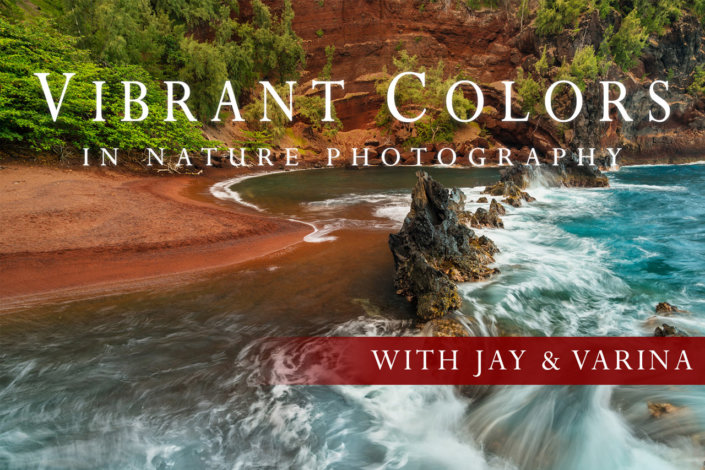 Cover for Vibrant Colors in Nature Photography Online Class by Jay & Varina Patel