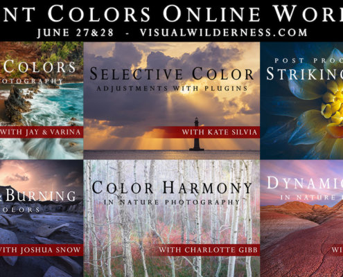 Cover for Online Vibrant Colors Workshop on Visual Wilderness