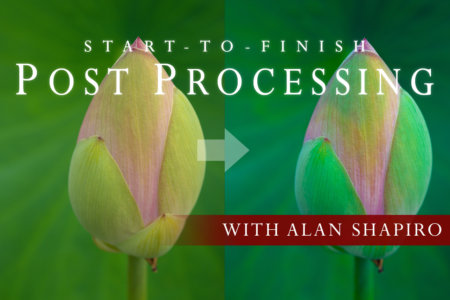 Cover for Post Processing Webinar by Alan Shapiro