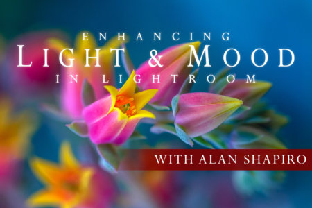 Cover Image for Enhancing Light and Mood in Lightroom Class by Alan Shapiro