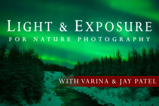 Cover image for Light & Exposure for Nature Photography Class by Jay and Varina Patel