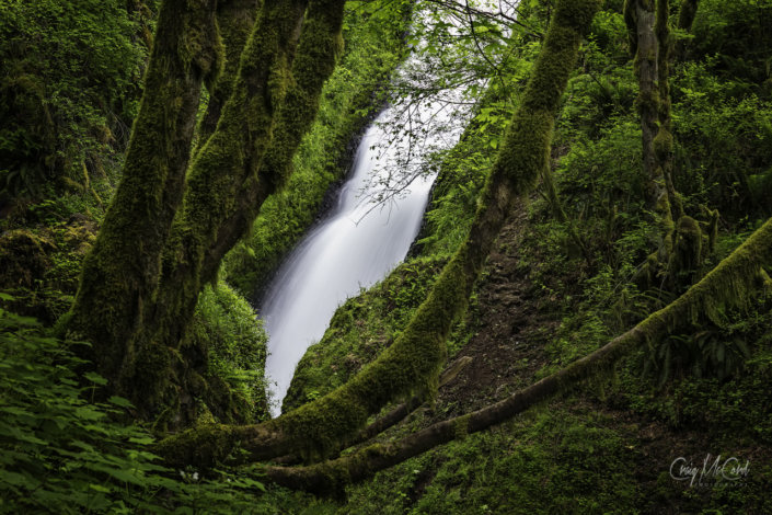 Waterfall Photography from Oregon by Craig McCord