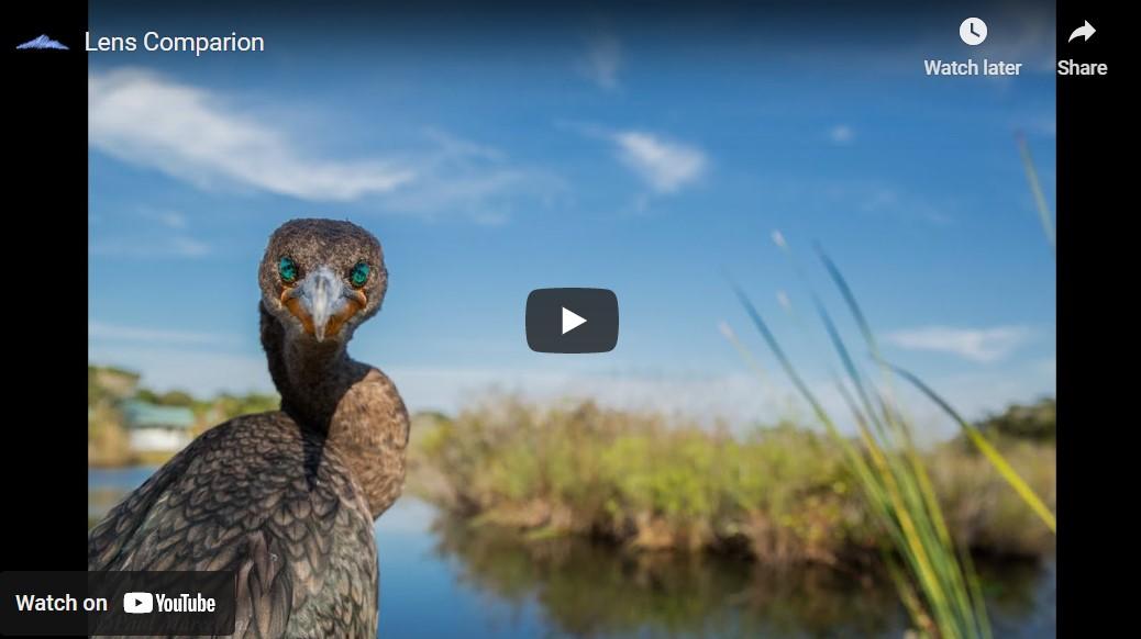Lens Comparison Video Cover by Pro Landscape Photographer Paul Marcellini