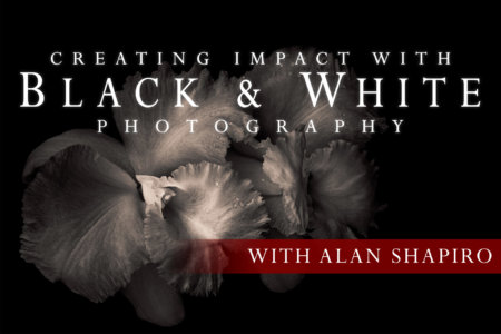 Creating Impact with Black and White Photography with Alan Shapiro