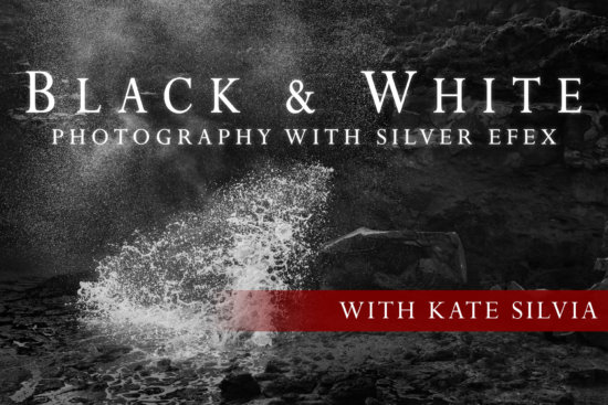 Black & White Photography with Silver Efex Masterclass cover page by Kate Silvia