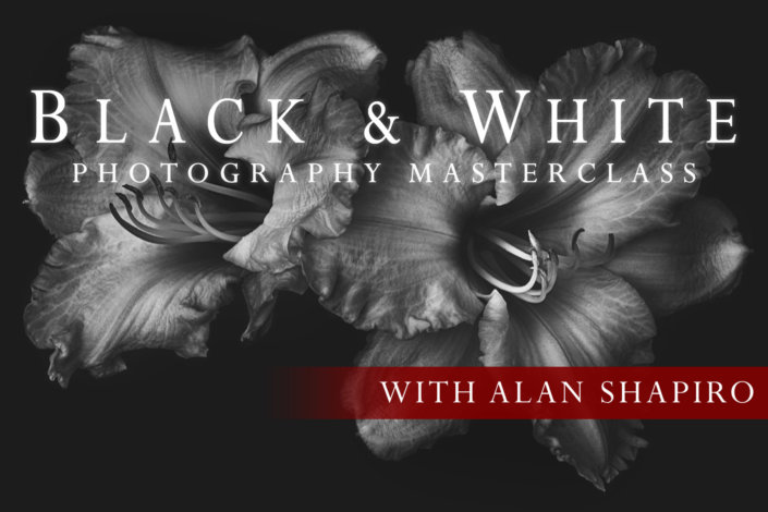 Black & White Photography in Masterclass cover page by Alan Shapiro