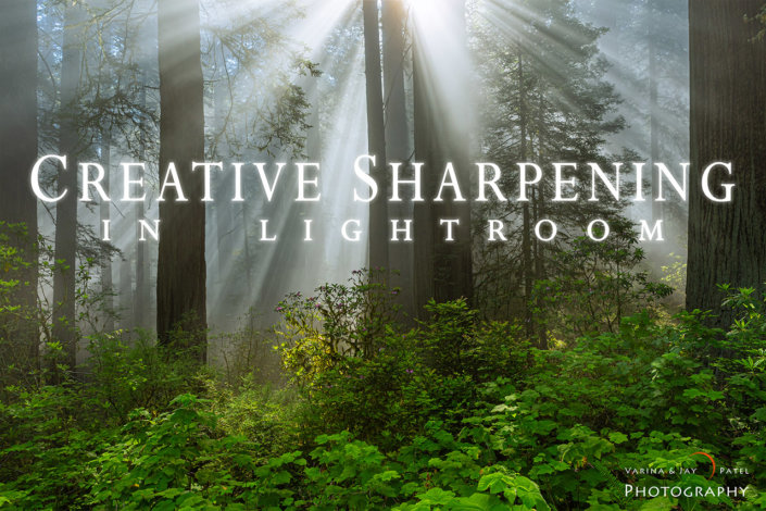 Cover for Creative Sharpening in Lightroom Tutorial by Jay Patel