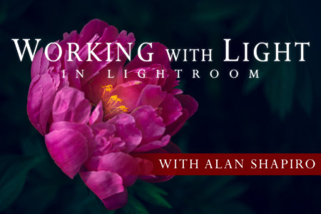 Cover for Working with Light in Lightroom Online Class by Alan Shapiro