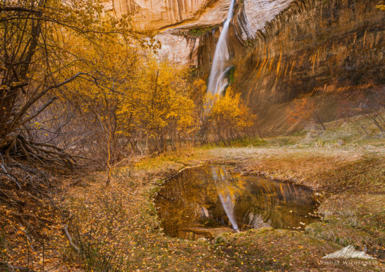 Photoshop Layers used to combine a polarized and unpolarized image for post processing - Calf Creek Falls, Utah by Jay Patel