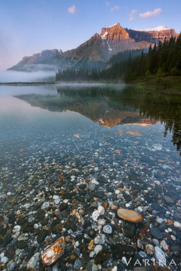 Nature photography composition after sunrise from Graveyard flats, Banff National Par, Canada by Varina Patel